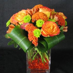 floral maintenance